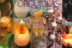 Orquídeas de Oaxaca (Some Species of Orchids of Oaxaca)